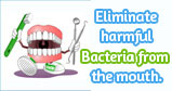 Freshclor kills mouth bacteria totally